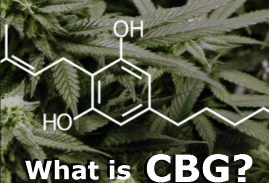 The Benefits of CBG