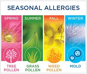 Cannabis Helps Allergies