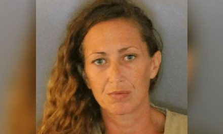Florida Woman Leads Police on Chase Through Store Ceiling