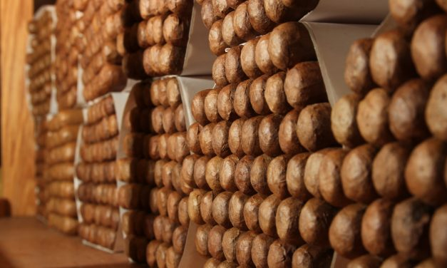 Cigar Vitolas in Detail